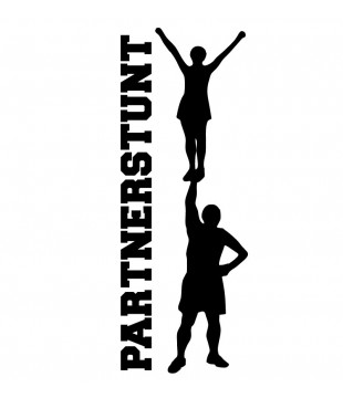 Car/multipurpose sticker - Partner Stunt